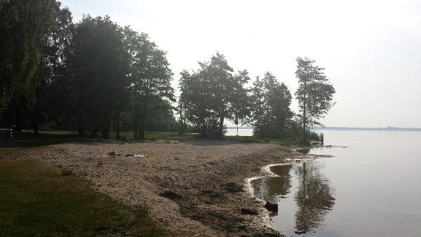 Strand von Mardorf am Steinhuder Meer